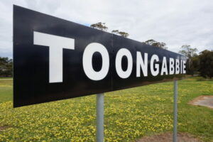 Read more about the article The Naming of Toongabbie