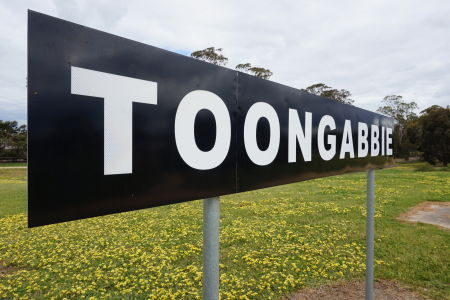 You are currently viewing The Naming of Toongabbie